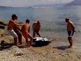 tonno sullo stretto di Messina