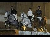 Carrousel d'obstacle à 8 chevaux