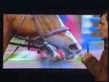 """For those that say """"Snaffle Bits"""" are kind - Great Horse Sporting Events - Rick Gore Horsemanship"""