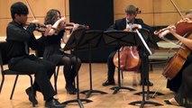 Schubert Quintet C Major op 163 D 956 ( 1.Allegro non troppo)