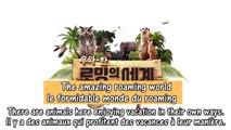BTOB's CF for LGplus LG U+ Eng Sub ❤ BTOB funny moments 비투비 육 성재 비투비 괜찮아요 sungjae kiss fanmade