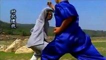 Shaolin small piercing kung fu tong bi quan  combat methods