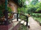 Wiesl Tours: Thailand - Khao Yai Nationalpark
