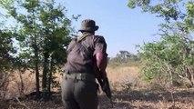 كلاب تحمي حيوانات وحيد القرن في جنوب افريقيا