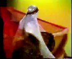 """Belly Dancer Badawia - 1978 """"Veil Dance"""" from """"Belly Dancing: Images From Vancouver"""""""