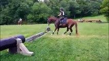 Un cheval pas très sur de lui - Saut hilarant