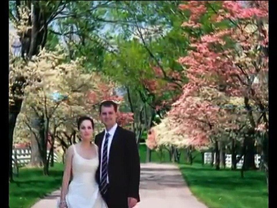 Professional 8x10 Ivory Slip In Wedding Parent Photo Album Holds 20 Photos Sareg Com