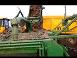 Removing straw from carrots, chopping and loading into trailers for A.D Plant fuel