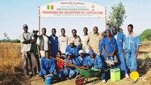 E-TIC:  Formations des Volontaires de l'agriculture du Sénégal