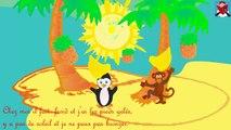 """""""""""Un pingouin du pôle nord"""" -Le Pingouin( Chanson animée)"""