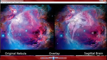 The Brain & Pineal Gland Of The Orion Constellation