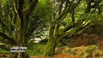 Ireland Travel ,  West Cork Travel ,  Irish Travel ,  Ireland Travels ,  Ireland Holiday ,  Ireland Blog