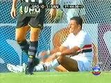 São Paulo 1 X 2 Santos - Melhores momentos na volta de Robinho ao Santos com um golaço de Letra