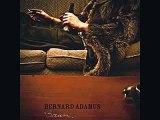 Bernard Adamus Cauchemar de course