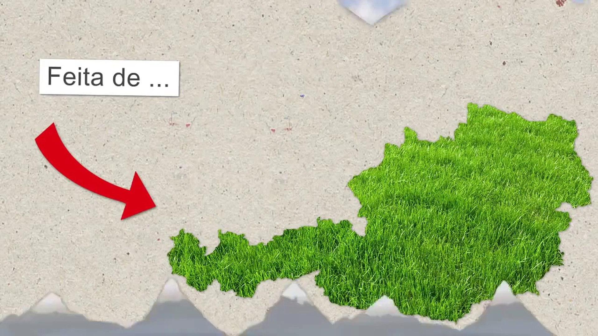 Advantage Austria - Inovações e Fatos sobre a Áustria - Infografik (PT)