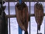Winter Surf at Sokcho Beach