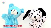 Itsy Bitsy Spider Incy Wincy Spider - Funny Giant Panda and Puppy Dog puppets children rhymes