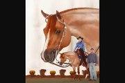 AQHA Stallion 'Zips Goodbar Chip'