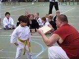 5 Year Old Boy Yellow Belt Tae Kwon Do Board Breaking