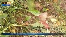 Morbihan: quatre adolescents meurent dans l'accident d'une fourgonnette