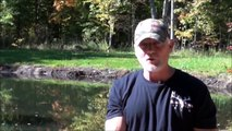 Extreme Hog Hunting in USA - Bow hunting - Caccia arco cinghiale - Chasse sanglier arc