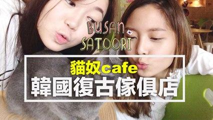 釜山的貓咪放題、星級復古傢俱店《走過浮華釜山•首爾》