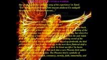 The Rising Of Great Universal Warrior Shree Surya Narayanan 2 Sri Vidya Varmam - & Gayathri Mantra