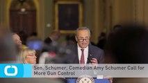 Sen. Schumer, Comedian Amy Schumer Call for More Gun Control