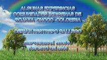 EXPERIENCIAS EN COMUNIDADES INDIGENAS EMBERA  DE BOJAYA -CHOCO- COLOMBIA