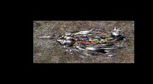 DREFF Workshop - Plastic Vortex: Our Oceans, Plastic and Other trash with Doug Woodring