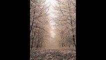 Philip Glass - 'Piano Etude No.6' - Andrew Chubb piano