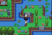 Pokémon Flora Sky [GER] - Folge 47: VM Kaskade - Let's Play Pokémon Flora Sky~