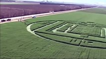Crop circles in California:  Giant circles appear in Salinas Valley, California, USA