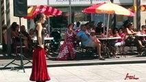 Association Culturelle Flamenco Foire aux Associations 2010-1.wmv