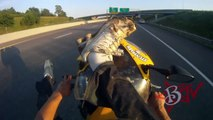 Motorcycle STUNTS Street Bike Stunt Rider Performs Long WHEELIE On Highway Riding Honda CBR600F4i
