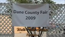 Dane County Walk-Trot-Canter Equitation