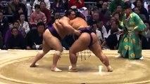 Day 13 Sumo Makuuchi recap Haru basho March 2014