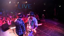 CCR Tribute |  Creedence Tribute Band |  Creedance Tribute | Creedence Forever