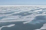 La conquête de l'Arctique par la Russie à travers nos télés, en 42 secondes