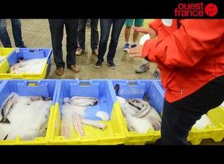 Lorient / visite du port de Keroman