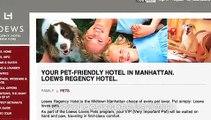 Loews Regency Hotel.....BEST NYC Pet Hotel