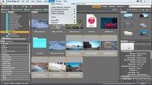 How To Zoom & Pan Images/Video In Adobe Premiere Pro Urdu