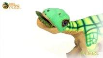 Pleo rb - How to name Pleo RB