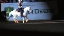 Anky van Grunsven's Reining Freestyle at WEG