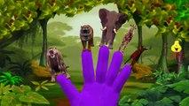 Animals Cartoons Finger Family Nursery Rhymes | Animals Cartoon Children Nursery Rhymes