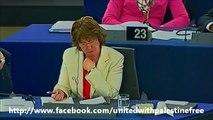 Palestine vs Israël 2012  : Coup de gueule de Daniel Cohn-Bendit Parlement Européen