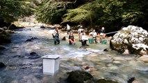 Pêche électrique Guiers mort Août 2014