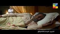 Diyar E Dil New Episode Promo HUM TV Drama  - Video Dailymotion