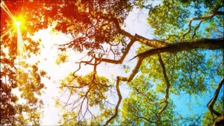 New Age Music   instrumental Music   Independent Music   Original Music   New Music;relaxing music