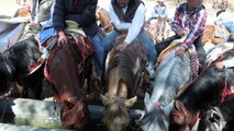To Cristo Rey, on horseback: A pilgrimage in Mexico
